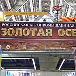 Выставка «Золотая осень-2010»