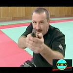 Профессия - телохранитель