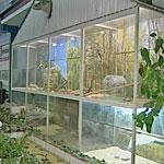 Зоопарк на производстве