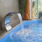 Строительство бассейнов и ландшафтный дизайн