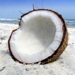 Импорт кокосовых орехов